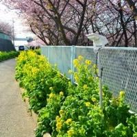 日本の詩の歴史パート2