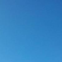 朝の青空を眺める
