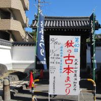 京都・百萬遍知恩寺にて