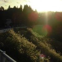 1696日目 田舎の秋の夕焼け