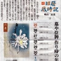 沖縄県 旧暦 歳時記 (*^_^*)6月25日~7月1日
