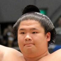 「新入幕宇良は6敗目、碧山にはたかれ体格差を痛感」とのニュースっす。