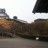 雨の掛川城探訪