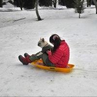 春キャンプ♪雪キャンプ♪5(愛犬とソリ&雪山登り)