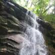 極楽寺山・蛇の池・牛池・白樫尾根コース周回(4) 下山