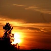 西方浄土とサイバー浄土…多摩川冬景色シリーズ