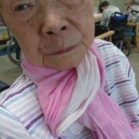 92才の介護ダイアリー,転倒したが、打撲症状は無く、擦り傷だけで済んだ、織物のバッグが先に落ち、その上に腹部から倒れる
