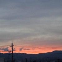 11月20日(木)晴