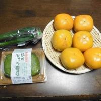 柿の里 九度山