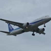 福岡空港の着陸機 10月16日