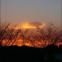 日没のころ