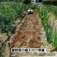 耕運機の充電切れと肥料切れ!