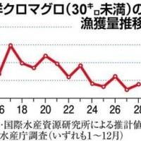 日本は年間の太平洋マグロの漁獲規制を超える