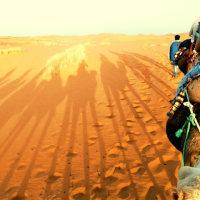 砂漠の瞑想