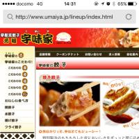 お昼は宇都宮餃子