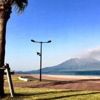 今日の桜島は、1日中噴煙を上げています。