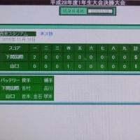 下関国際校硬式野球部&トラ兄ちゃん!クマかくれんぼ楽ちいでしゅ=^_^=
