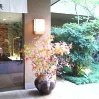 日本のおもてなしがここにありました。