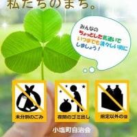 5/27(土)キャベツの消毒