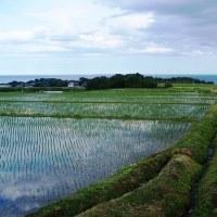 秋田県・にかほ市の「西中野沢の棚田」