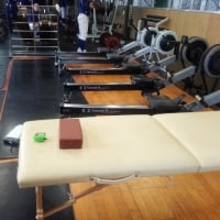 スポーツ障害、投球障害肩・肘の予防のために~星稜高校野球部トレーナー活動~