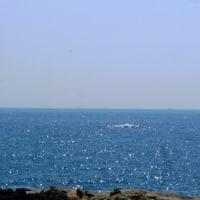 『太地町 梶取崎』  3頭のクジラが現れ潮を吹く! YASUNOBU MATSUO Plays Synthesizer