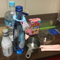 【お菓子さんコラボ企画】日本酒ゼリー作ってみた