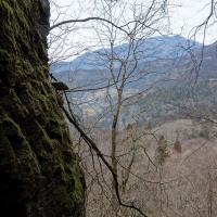 干支の山その5