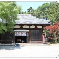 沙羅双樹の花!鶴林寺にて