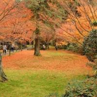 京都大原三千院 2