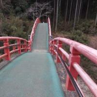 養老山 立國寺の参道でとんでもない光景に遭遇しました!。