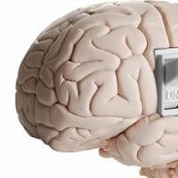 脳の使い方を間違えたね?・・・希望の手紙