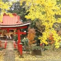 厳島神社の紅葉