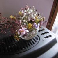 孫の生け花教室 花摘みからいけるまで