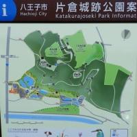 片倉城址公園 散策