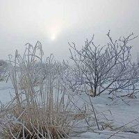 霧が凍りつく