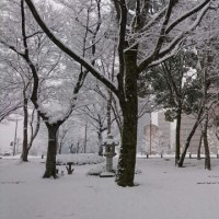 雪よ林檎の香のごとく降れ