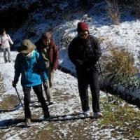 冬のスイセントレッキングツアー