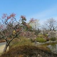 昭和記念公園その2