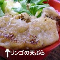 甘夏餅とリンゴの天ぷら弁当/陳皮をストック