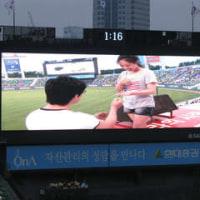 鯉チロー、韓国野球をゆく