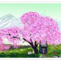 桜の季節!