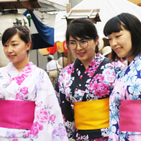 京都の観光地-5-