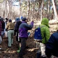 森林観察会の予定・・・