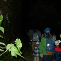 里山体験プログラム「ホタル狩りと暗闇体験」-1