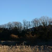1月16日、午前7時過ぎの空模様
