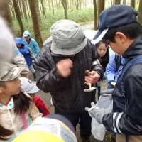 10月のイベント(里地里山探検隊)