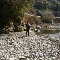アマゴの渓(その4)