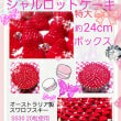 岡山 7月29日30日 Strawberry holic イオンモール岡山 スイーツデコ体験教室