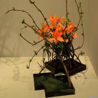清風瓶華 粕谷 尚廣 さんの作品・・・・いけばな展 新宿高島屋